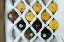 网上买水果要怎样打包寄快递呢?用防震珍珠棉吧