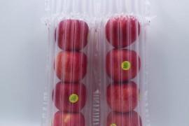 水果防震气泡柱